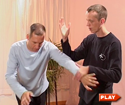 Nils Klug and partner demonstrate Roll Away Tai Chi application