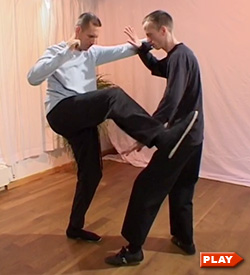 Nils Klug and partner demonstrate Step Up, Deflect, Intercept and Punch Tai Chi application