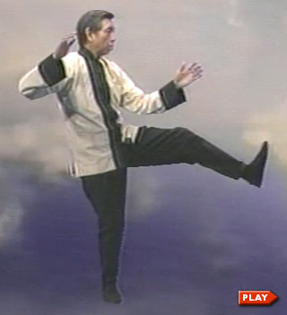 William Chen Yang Short Form Kick